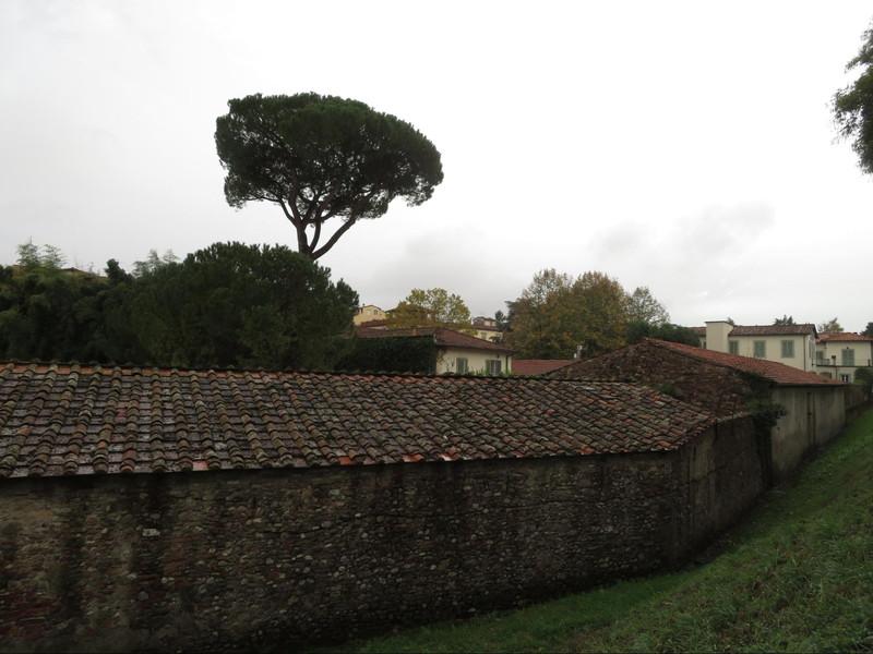 ルッカの町を囲む城壁